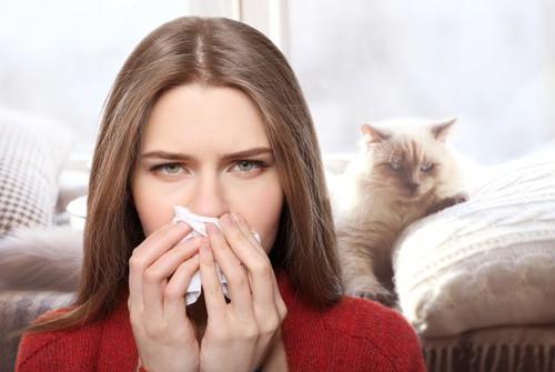 Allergen vs Allergy